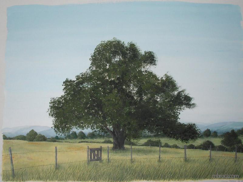 Paysage d'été. Étude documentaire à la gouache. Un arbre dans un pré, avec des montagnes au loin. Une barrière au premier plan.