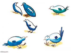 Six oiseaux bleus.