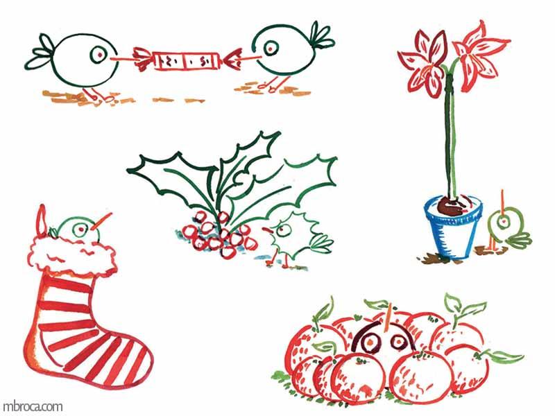 Des oiseaux tirant une papillotte, du houx, une fleur, des clémentines, une chaussette.