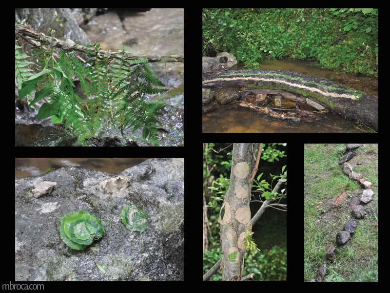 Quatre photographies d'oeuvres avec des feuilles, de l'eau, des cailloux, de la terre, des bouts de bois.