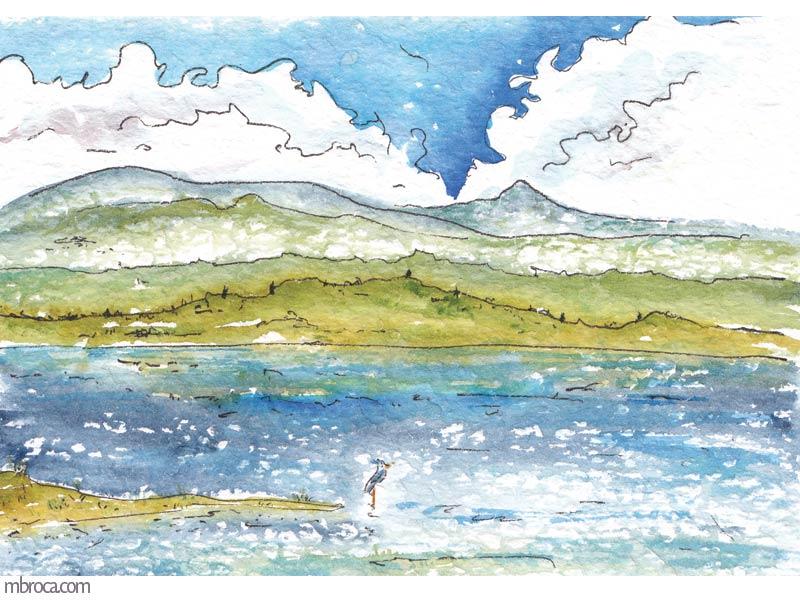 un étang avec n oiseau et des montagnes en arrière plan.