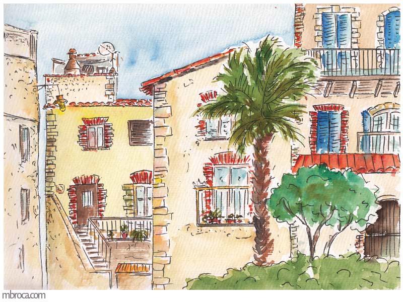 des maisons à pealada, un palmier