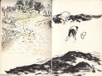 œuvres Trois personnes ramassent des coquillages, les jambes dans l'eau.