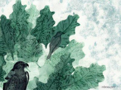 les feuilles d'un chêne et deux oiseaux gris posés sur les branches.