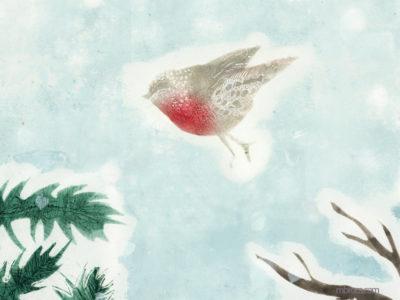 un rouge gorge vole entre le branches d'un sapin et celles sans feuille d'un chêne.