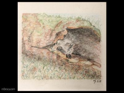 Céramique, un raton-laveur se cache dans un tronc d'arbre creux. On ne voit que sa tête et aussi une patte.