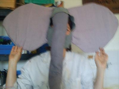 Cours, deux grandes oreilles et une trompe sur un masque en tissus.