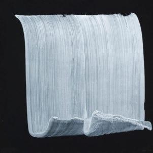 5 expositions 2018, deux traits de pinceau blanc sur fond noir