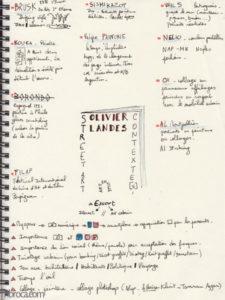 Une page de carnet, sketchnoting, sur le livre d'Olivier Landes