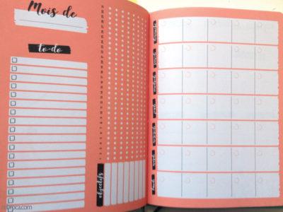 Une double page pour organiser son mois et avoir de la motivation.