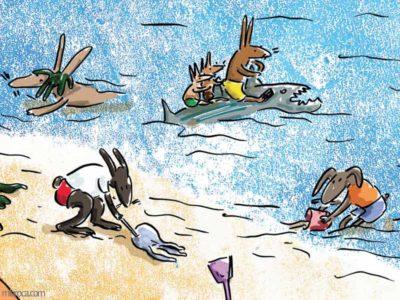 Des lapins jouent dans l'eau