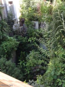 Le voyage à Nantes : des plantes