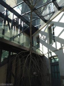 Le voyage à Nantes : deux arbres reliés par le tronc