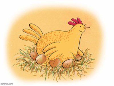 une poule qui couve des oeufs
